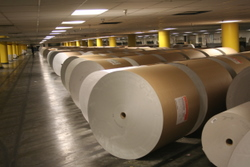 Paper rolls awaiting production